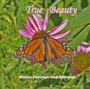 Inspirational Quote About Beauty from a Wrinkled Monarch Butterfly- True Beauty Always Shines Through