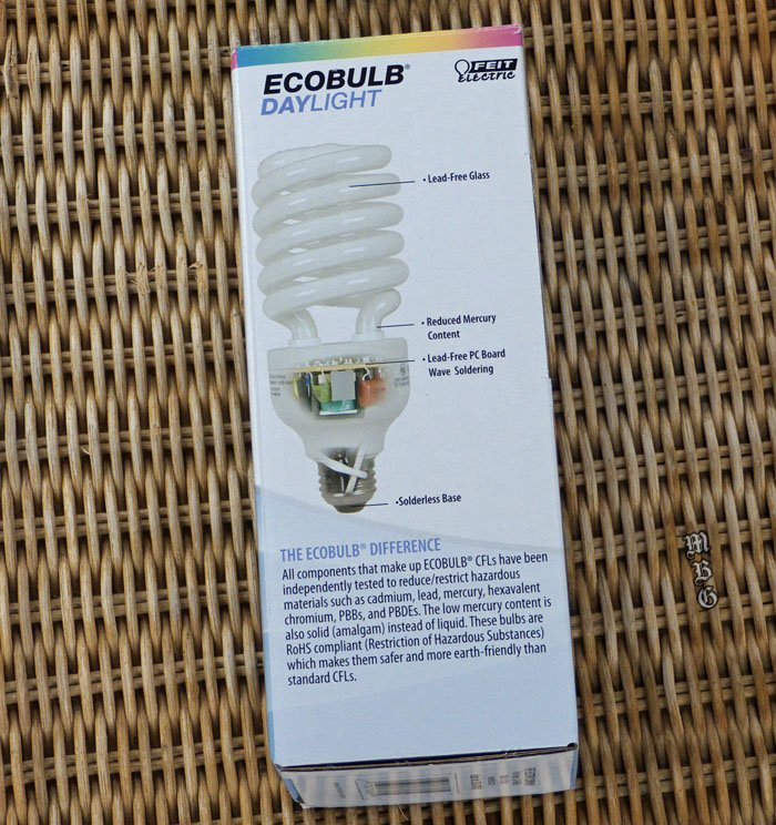 CFL Daylight Bulb- butterfly garden resource for overwintering plants