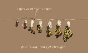 Inspirational Quote Monarch Butterfly Hatching