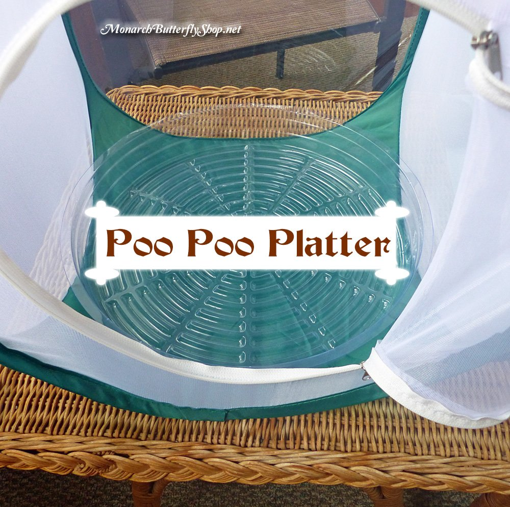 The Poo Poo Platter is a bendable cage liner that will save you time cleaning up after messy monarch caterpillars.