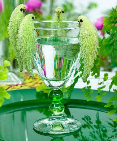 Twelve Butterfly Inspired Designs for your Garden- Milkweed Pod Decor
