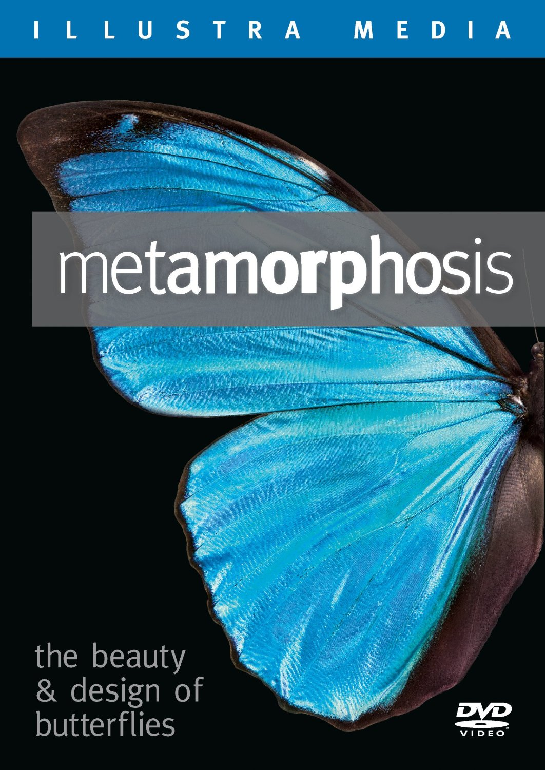 Metamorphosis on Bluray or DVD- Butterfly Gift Idea 5