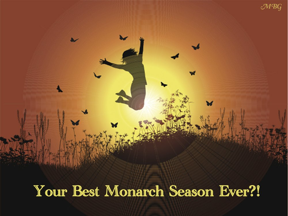 5 Ways to Support Monarch Butterflies while making 2018 your best monarch season ever.