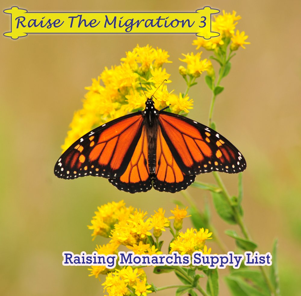Supply List Suggestions for Raising Monarchs to Release for the Great Fall Migration- Raise the Migration