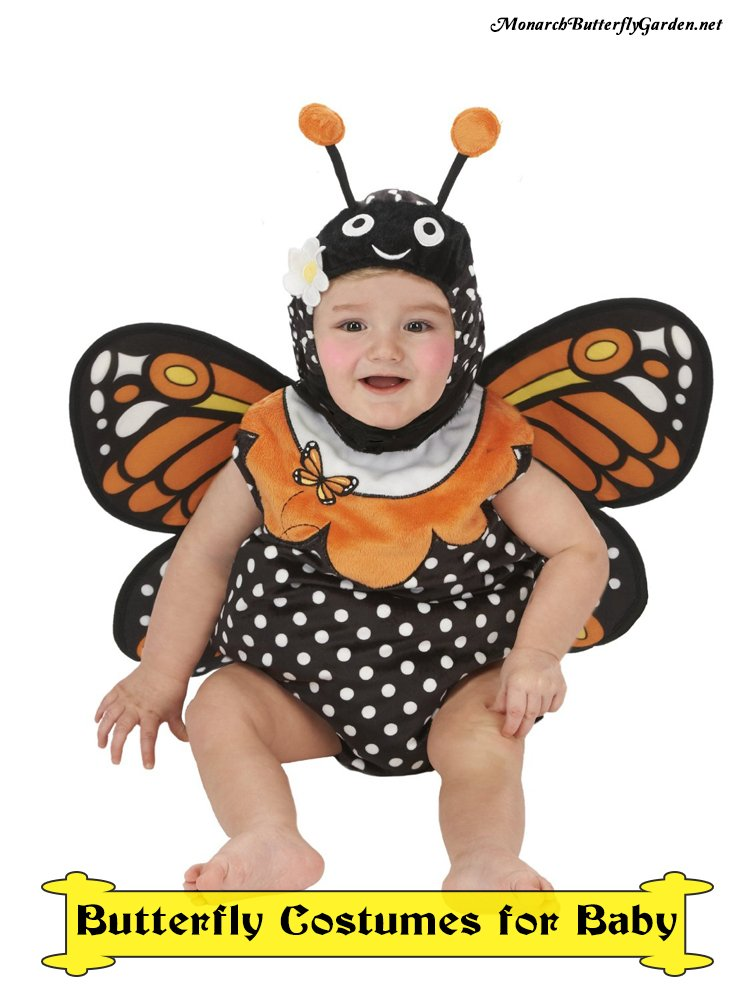 Monarch Butterfly Costume Ideas for Infants and Toddlers- Choose from several Styles, Sizes, and Colors