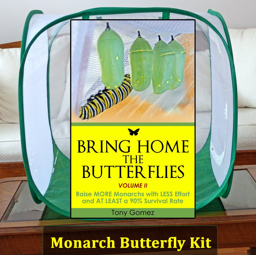 The Ultimate Raising Kit is a monarch butterfly kit that includes a cage for raising butterflies, floral tubes for milkweed stem cuttings, and a digital book about how to raise monarch butterflies indoors. Get the tools and info you need for raising healthy monarch butterflies...