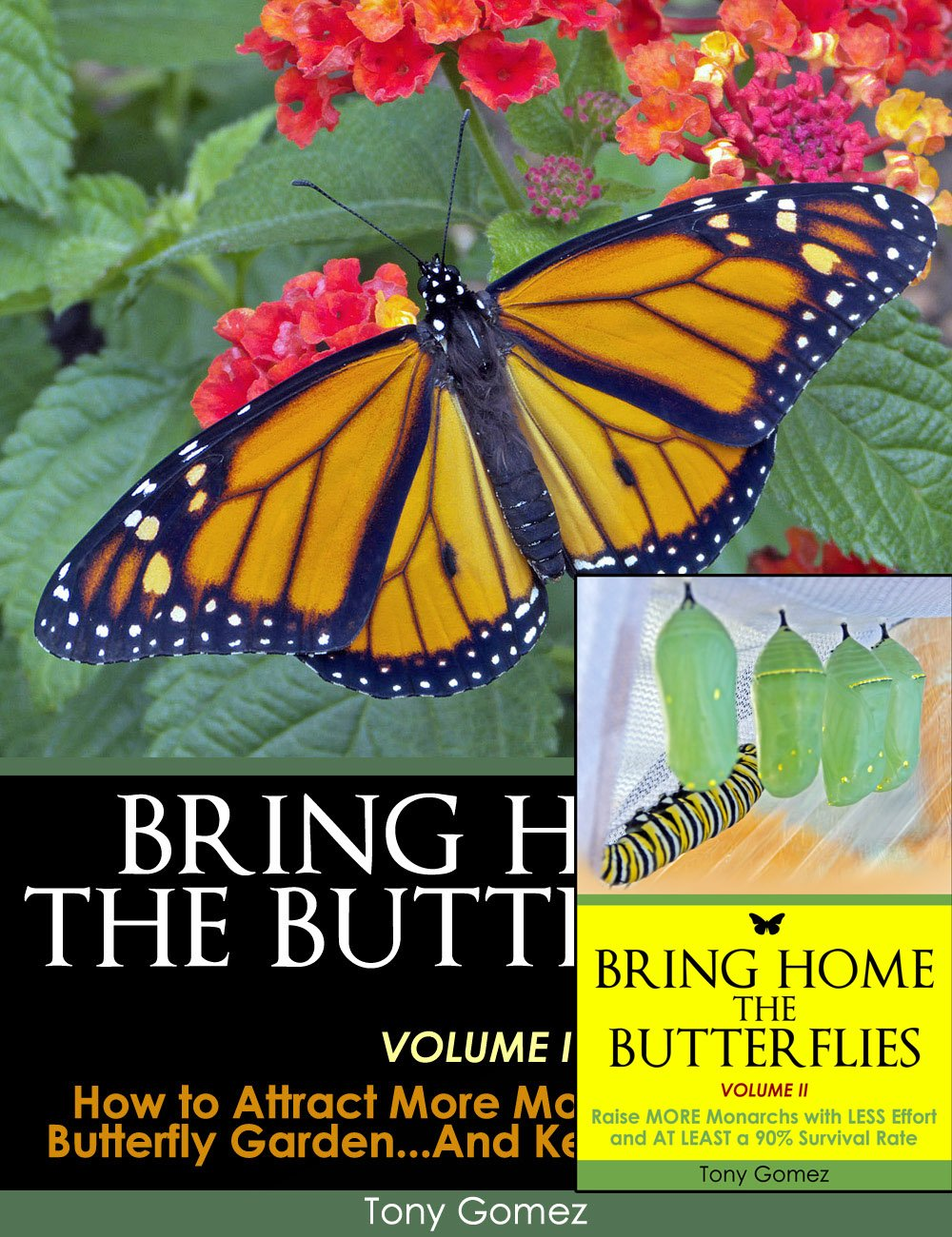 Monarch Butterfly Book Bundle- all the info you need for attracting more monarchs to your garden, raising them indoors, and releasing them back to nature...the circle of life!