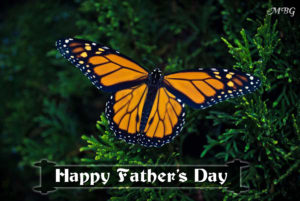 Father's Day Greeting with Monarch Male