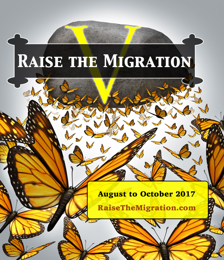Learn How To Raise Monarch Butterflies to Release for the 2017 Monarch Migration and Help Save Monarchs for Future Generations.