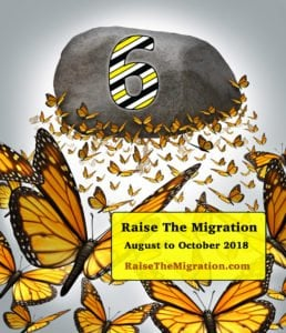 Learn How To Raise Monarch Butterflies to Release for the 2018 Monarch Migration and Help Save Monarchs for Future Generations.
