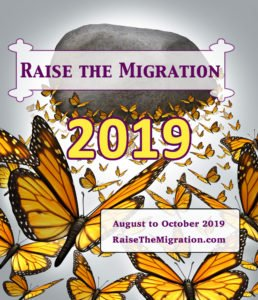 Learn How To Raise Monarch Butterflies to Release for the 2019 Monarch Migration and Help Save Monarchs for Future Generations.