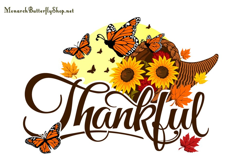 Thankful Fall & Thanksgiving Butterfly T-shirt Collection