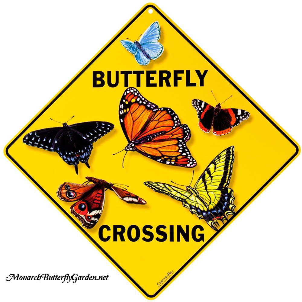 Butterfly Crossing Sign with Monarch, Swallowtails, & More- Butterfly Gift idea