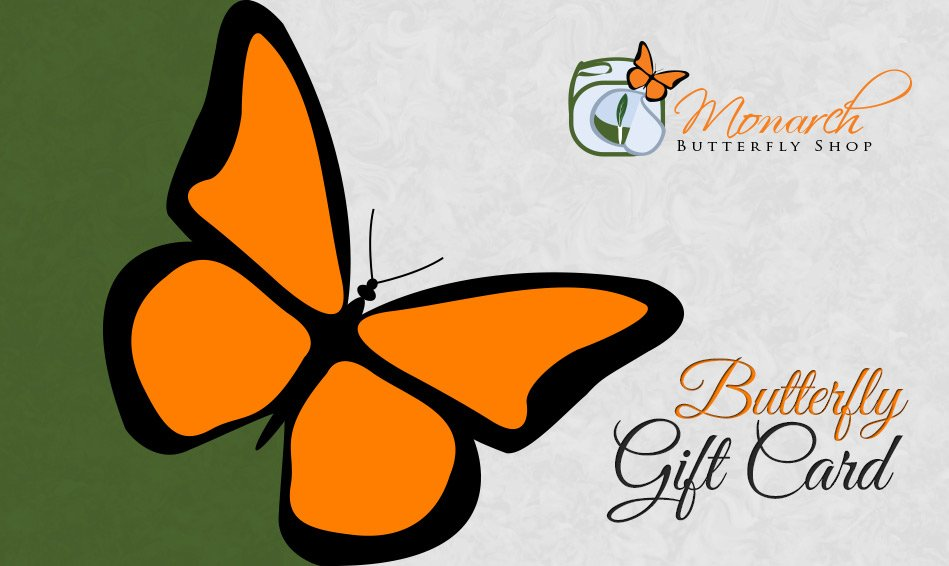 Butterfly Gift Card- Butterfly Gift Idea