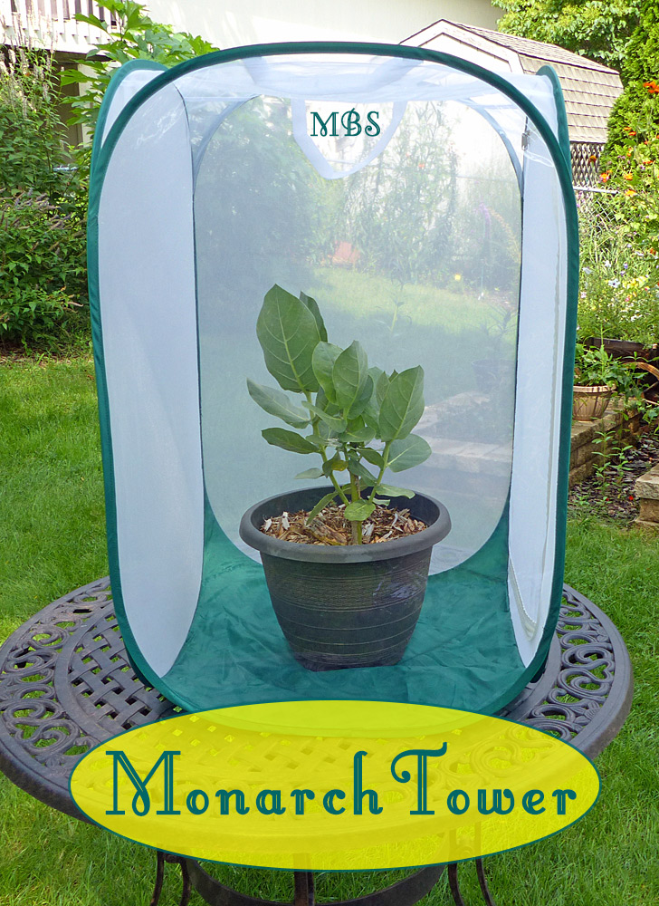 Monarch Tower Butterfly Cage- Butterfly Gift idea