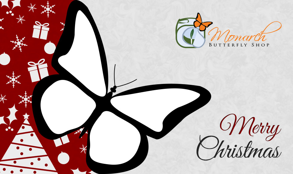Monarch Butterfly Gift Card- Christmas Gift Idea