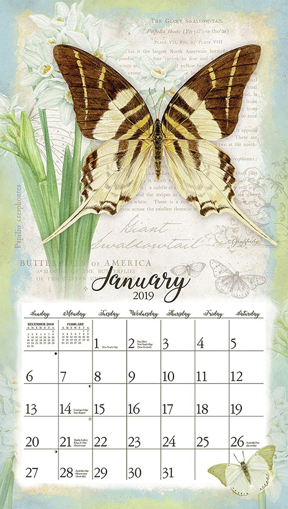 2019 Lang Butterfly Wall Calendar- butterfly gift idea