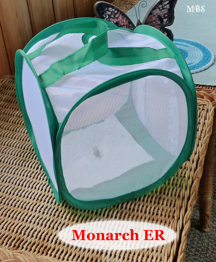 Monarch ER- Mini Monarch Hospital for Birthing Butterflies and Nursing Sick Caterpillars