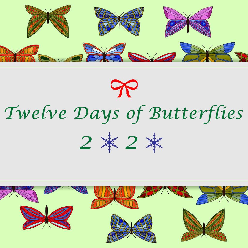 Twelve Days of Butterflies 2020- 12 butterfly gift ideas to make a butterfly lovers heart flutter.